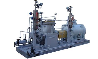 大连耐酸泵为您提供双吸石油化工流程泵