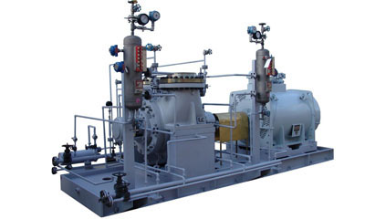 Double-suction petrochemical pumps